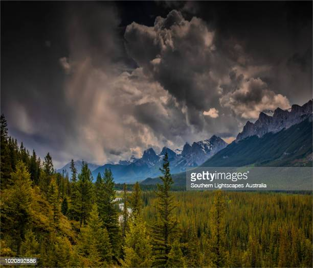 mountain scenery of the canadian rockies, canmore, alberta, canada. - bow valley stock pictures, royalty-free photos & images