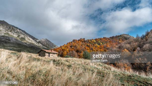 mountain shelter with a beech forest during fall season - castilla leon fotografías e imágenes de stock