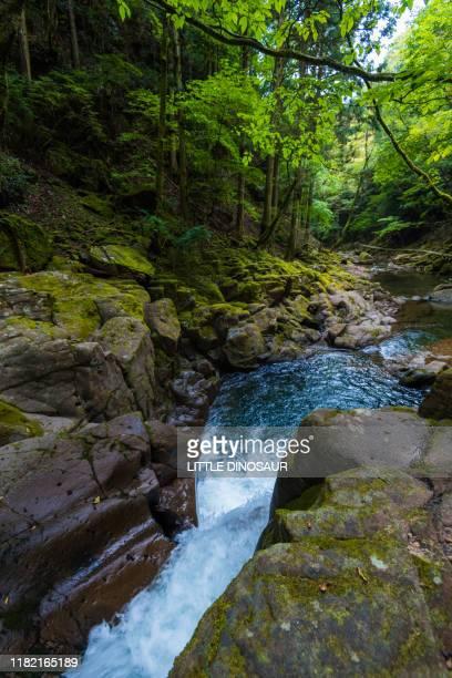 mountain stream and splashes. akame 48 waterfalls, mie, japan - 三重県 ストックフォトと画像