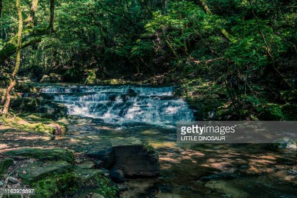 mountain stream flowing on stepped rocks. at the akame 48 waterfalls - mie prefecture stock pictures, royalty-free photos & images
