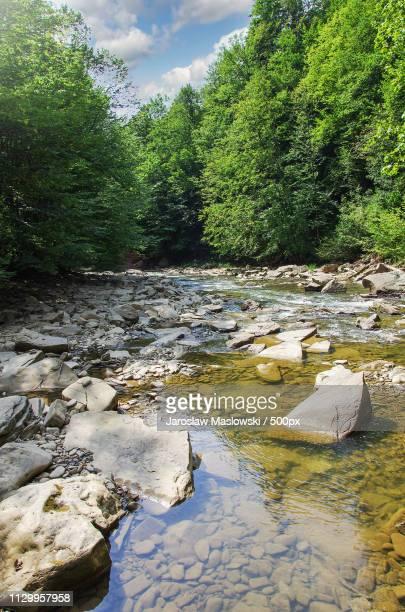 mountain stream in bieszczady - maslowski stock-fotos und bilder