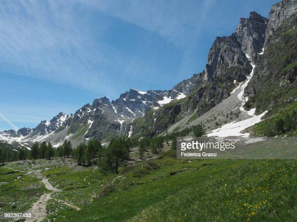 Mountain stream in Buscagna valley and mount Pizzo Crampiolo in the background, situated in the Natural Park of Alpe Devero (Parco Naturale dell'Alpe Veglia e dell'Alpe Devero), municipality of Baceno in the Lepontine Alps, Province of Verbano Cusio Ossol