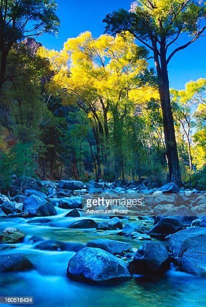 Mountain Stream in Fall Glenwood Canyon Colorado