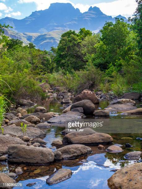 Mountain stream in front of Monks Cowl, a mountain in the Drakensberg Mountains in South Africa. The mountain also lends its name to the surrounding...