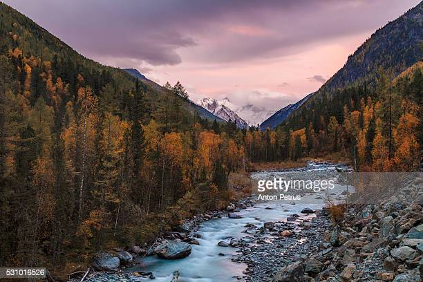 mountain stream in the autumn forest - summits russia 2015 stock pictures, royalty-free photos & images