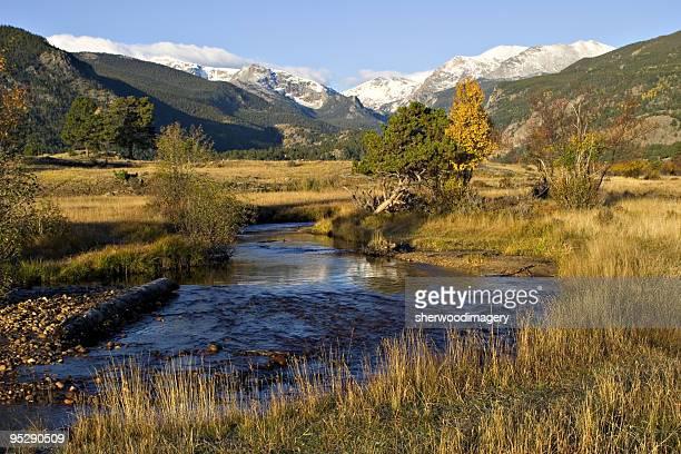 Mountain Stream Through A Golden Meadow In Autumn
