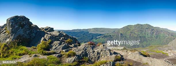 Mountain top, purple heather