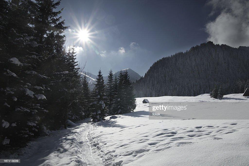 Piste de montagne : Photo