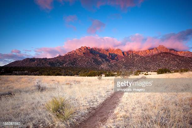 mountain trail sunset landscape - western juniper tree stock pictures, royalty-free photos & images