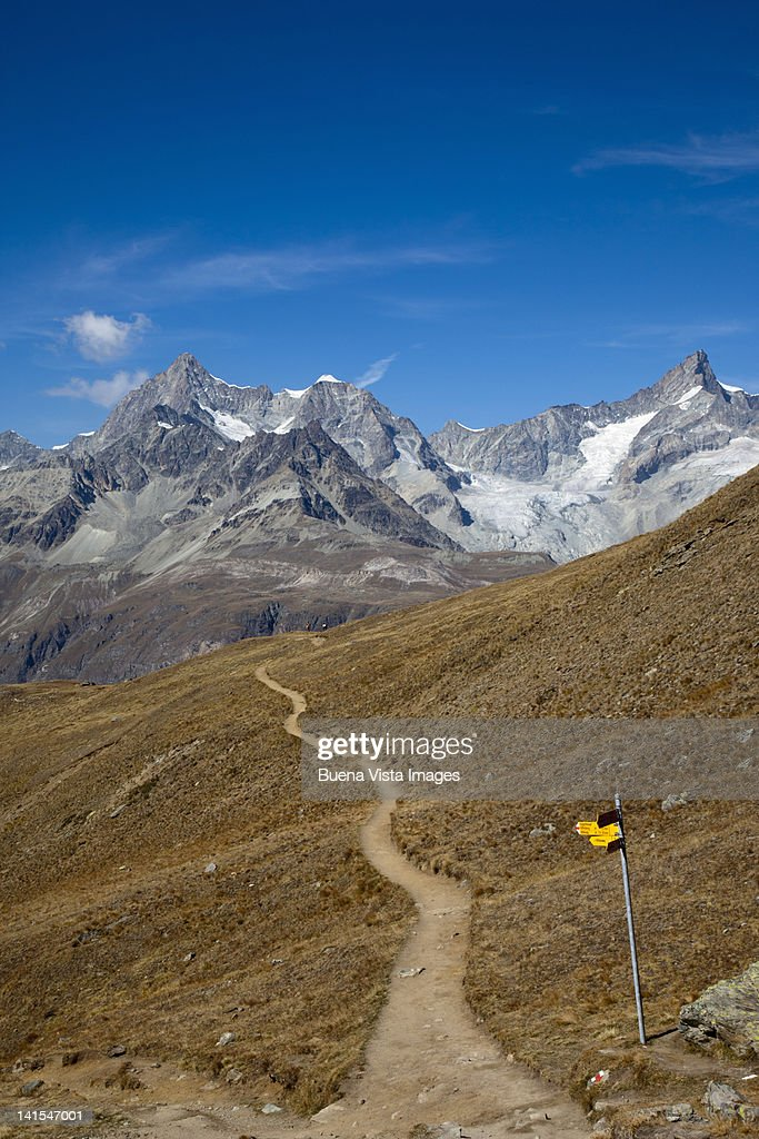 Mountain tray in the Matterhorn region : Stock Photo