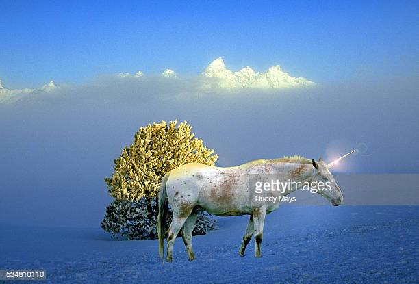 Mountain Unicorn