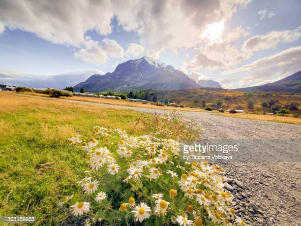 mountain valley panoramic background - south america stock pictures, royalty-free photos & images