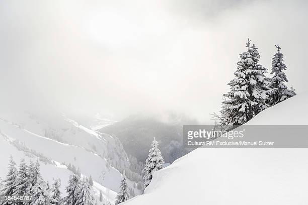 Mountain view in winter Reutte, Tyrol, Austria