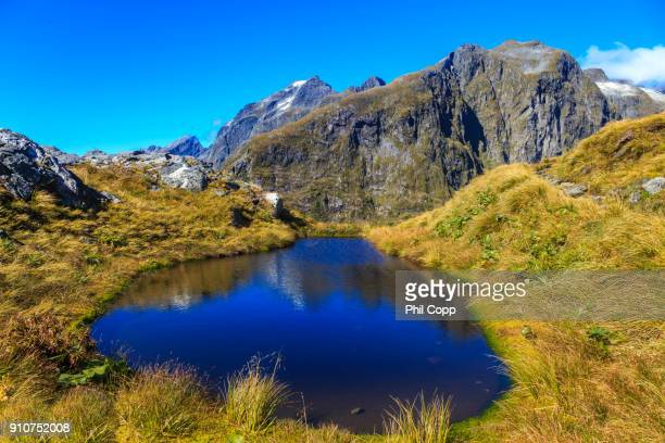 mountain view - southland new zealand stock pictures, royalty-free photos & images