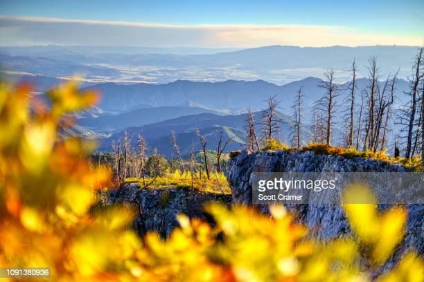 mountain views with fall foliage aspens - コロラド州 ニューキャッスル ストックフォトと画像