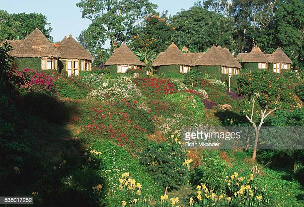 Mountain Village is an exclusive accommodation outside the city of Arusha Private huts are set amidst a beautiful setting with views of lush...