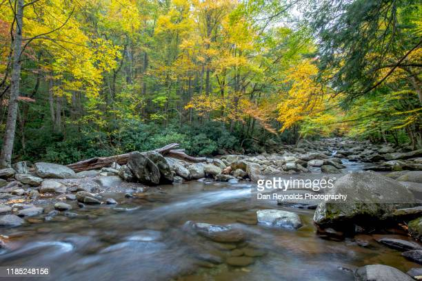 mountain waterfalls and stream - asheville stock pictures, royalty-free photos & images