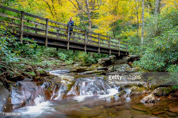 mountain waterfalls and stream with model - asheville stock pictures, royalty-free photos & images