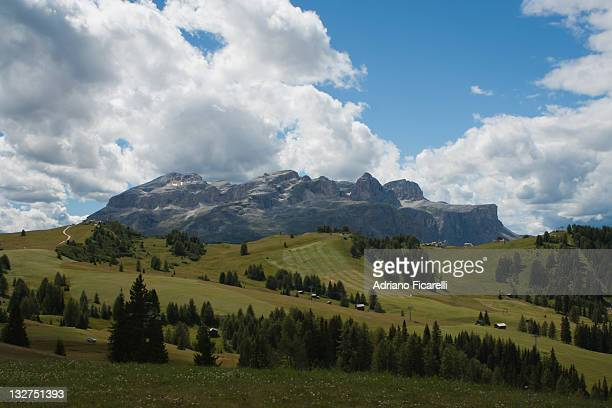 mountain with pine tree and cloudy sky - adriano ficarelli stock pictures, royalty-free photos & images