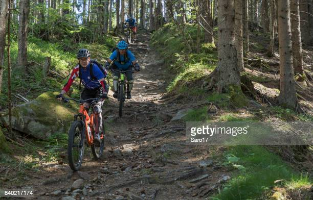mountainbiking on a bumpy single trail, austria. - cross country cycling stock pictures, royalty-free photos & images