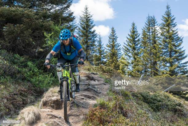 mountainbiking on carinthian single trail covered with roots, austria. - bumpy stock photos and pictures