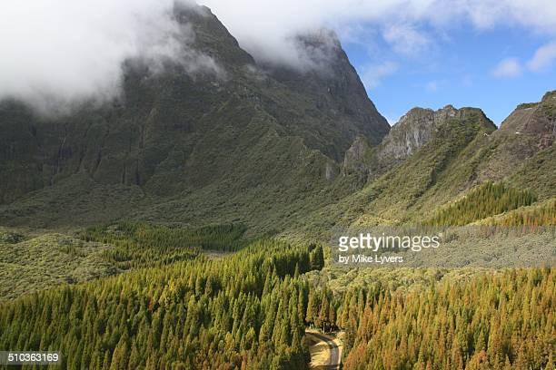 Mountainous interior of Reunion