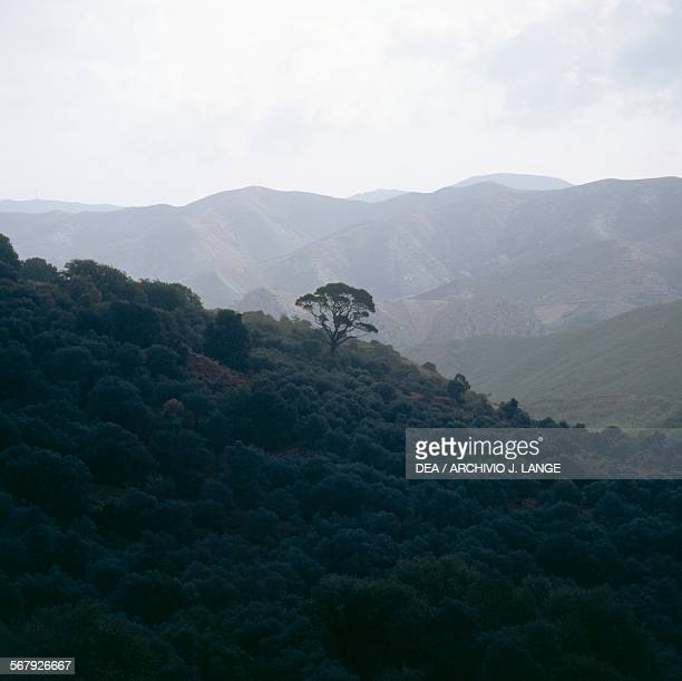 Mountainous landscape around Malia, Hersonissos, Crete, Greece.