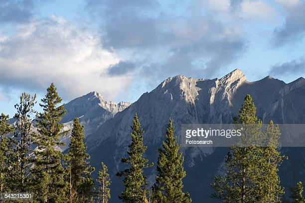 mountains above canmore, alberta, canada - bow valley stock pictures, royalty-free photos & images