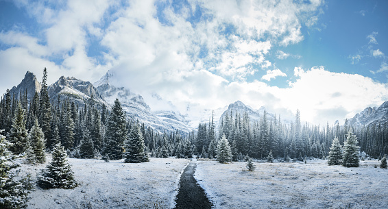 Mountains and forest in winter, Yoho National Park, Field, British Columbia, Canada - gettyimageskorea