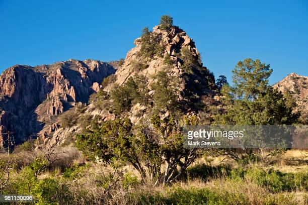 mountains and hillsides in the chisos basin - chisos mountains stock pictures, royalty-free photos & images