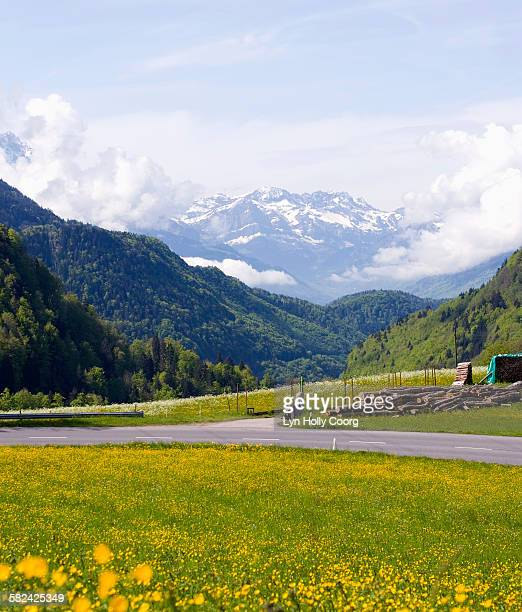 mountains and meadows in switzerland - lyn holly coorg imagens e fotografias de stock