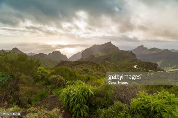 mountains and ocean in the far distance south tenerife near masca - pico de teide stock pictures, royalty-free photos & images