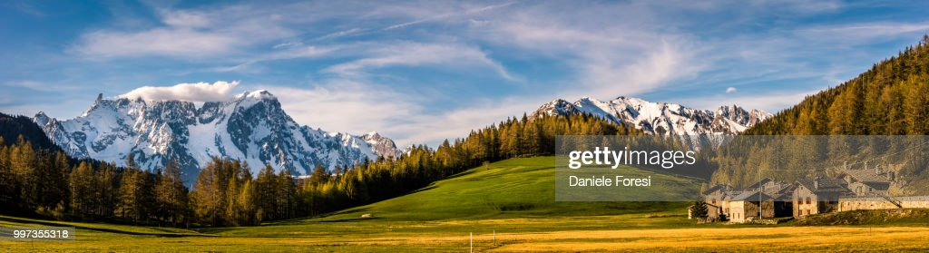 Mountains and trees. : Foto stock