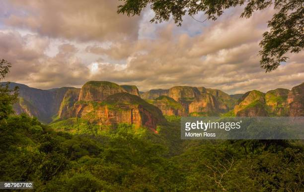mountains at amboro national park, bolivia - bolivia fotografías e imágenes de stock