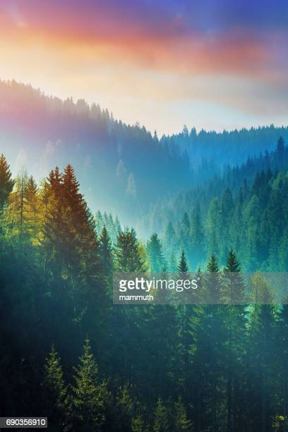 mountains at sunrise - the dolomites in south tyrol, italy - vertical stock pictures, royalty-free photos & images
