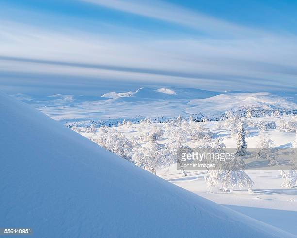 Mountains at winter