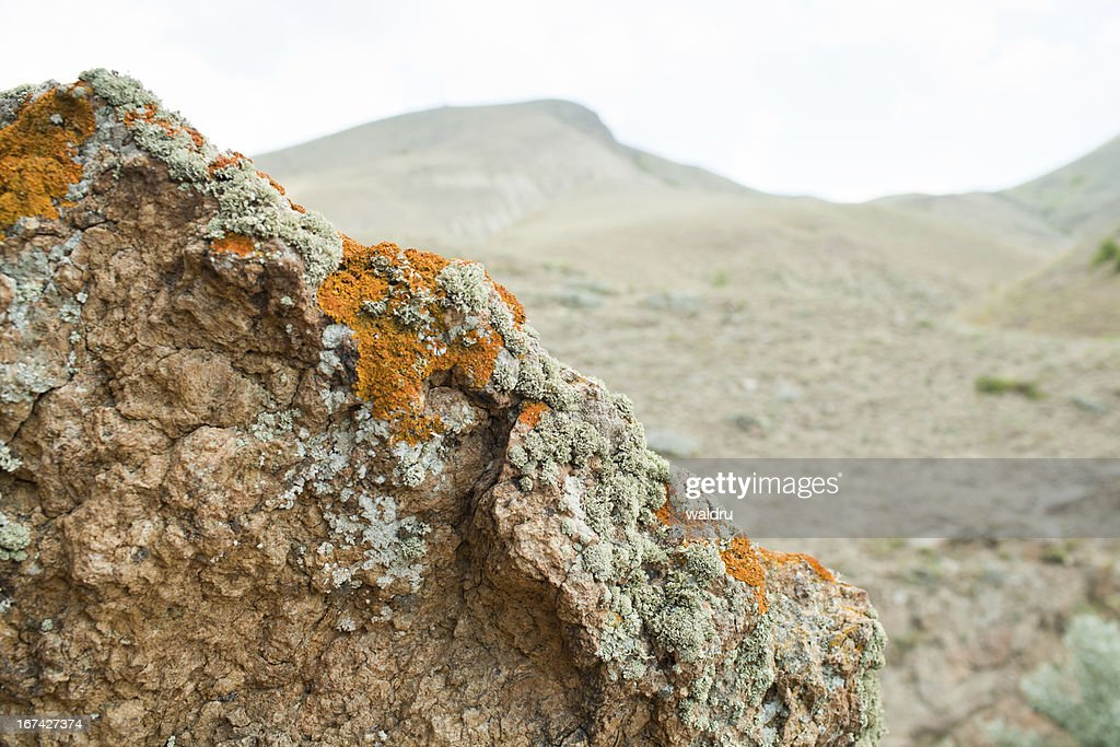 Mountains closeup : Stock Photo