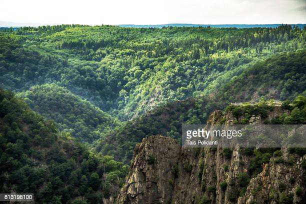 mountains covered in green at bodetal valley in thale - hexentanzplatz (witches' dance floor), harz mountains, thale, saxony-anhalt, germany - saxony anhalt stock pictures, royalty-free photos & images
