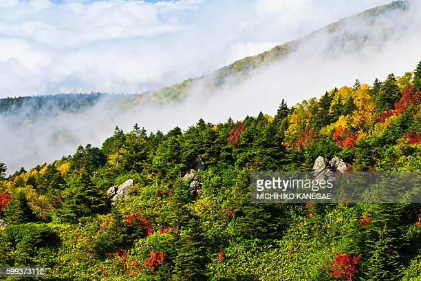 mountains in autumn - gunma - fotografias e filmes do acervo