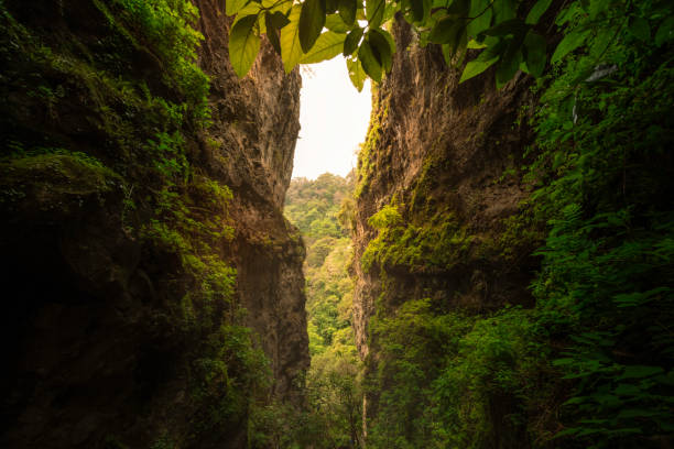 Mountains in lush green vegetation, Tepoztlan, Mexico