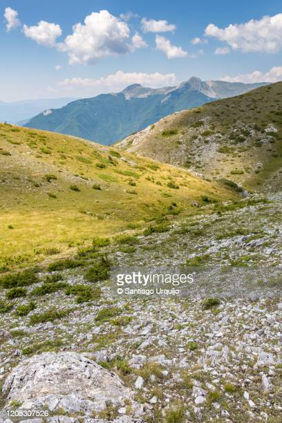mountains in mavrovo national park - macedonië land stockfoto's en -beelden