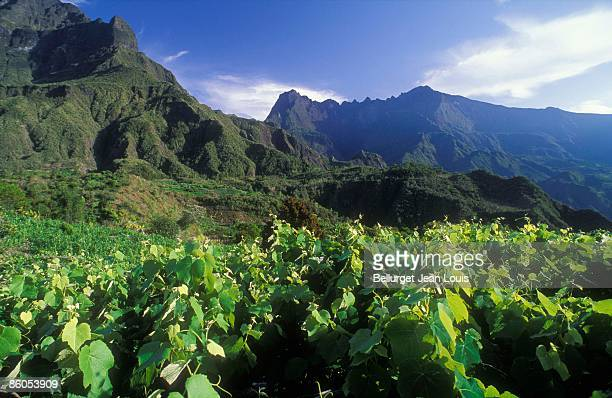 Mountains in Reunion Island