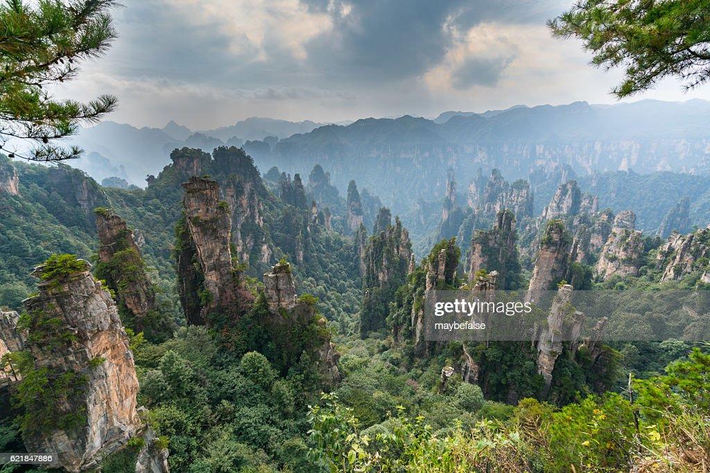 Mountains in Zhangjiajie national park : Stock Photo