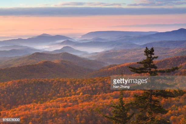 mountains landscape in autumn, north carolina, usa - blue ridge parkway stock pictures, royalty-free photos & images