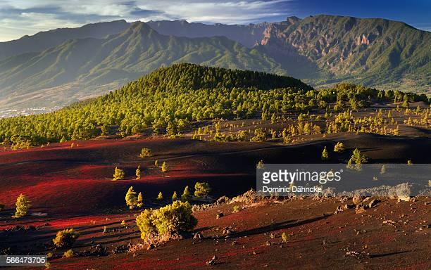 mountains of la palma island (canary islands) - dähncke fotografías e imágenes de stock