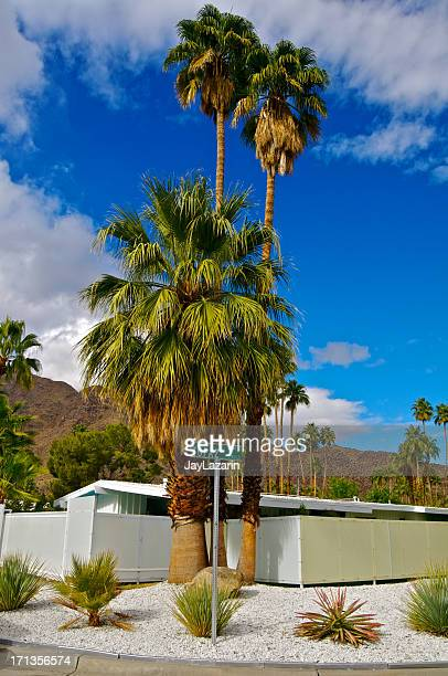 mountains, plants & mid-century home in palm springs, california - mid century modern stock pictures, royalty-free photos & images