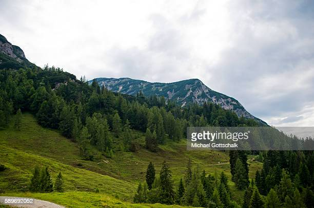 Mountains seen from a mountain meadow at Ascher Alm on July 23 2016 in Brandenberg Austria