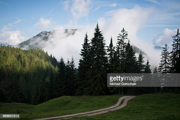 Mountains seen from a mountain meadow at Ascher Alm on July 24 2016 in Brandenberg Austria
