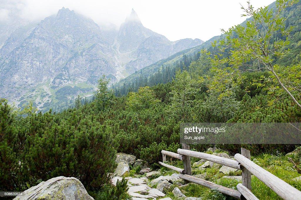Mountains, Valley of five lakes, Poland, Zakopane : Stock Photo