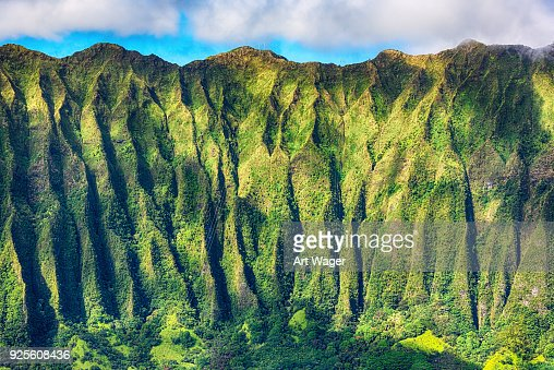 Mountainside Detail of Oahu's Landscape
